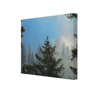 Trees Wrapped Canvas