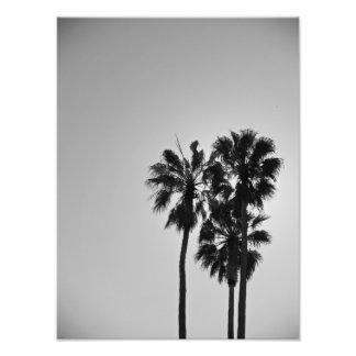 Treesome Photo Print