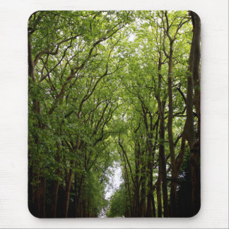 Treetops Vertical Mouse Pad