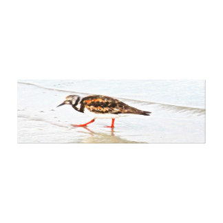 Trekking Bird Wrapped Canvas Wall Art Stretched Canvas Print