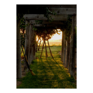 Trellis at Sunrise Poster
