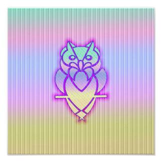 Trendy Pastel Owl Photograph