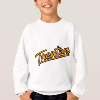 Trenton in orange sweatshirt
