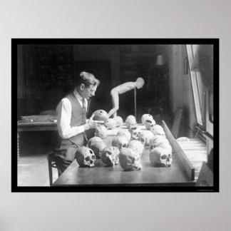 Trepanned Skulls Museum 1926 Poster