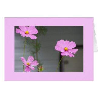 Tres Flores card