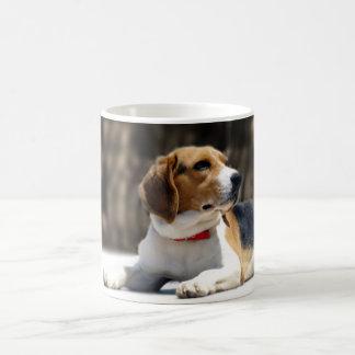 Tri-Color Beagle Coffee Mug