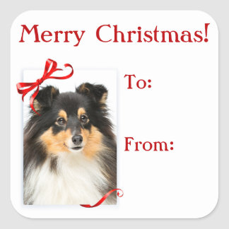 Tri-Color Sheltie Christmas Gift Stickers