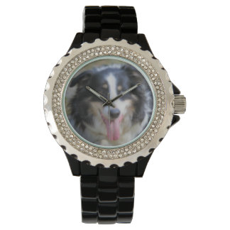 Tri Colored Border Collie Dog Face Watch