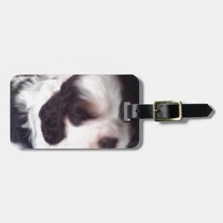 Tri colored cocker spaniel puppy luggage tag