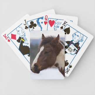 Tri-Colored Horse Bicycle Playing Cards