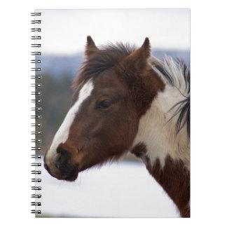 Tri-Colored Horse Notebooks