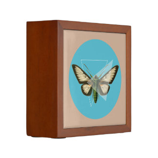 Triangle Butterfly Desk Organizer Pencil Holder
