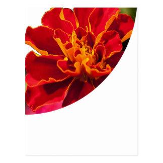 TRIANGULAR Cut Flower Exploded View: GoodLuck Postcard