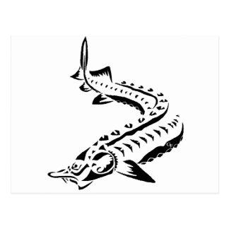 Tribal Sturgeon - Huso Beluga Postcard