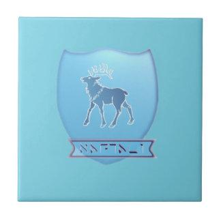 Tribe Naphtali Sky Blue Ceramic Photo Tile