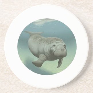 TRIBUTE TO MANATEES COASTER