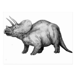 triceratops5 postcard