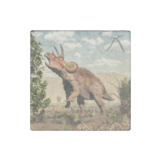 Triceratops eating at magnolia tree - 3D render Stone Magnet