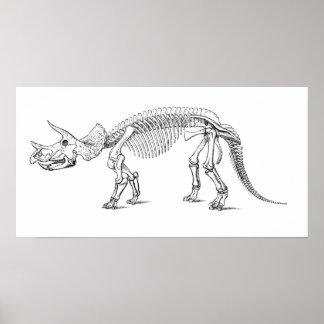 Triceratops Skeleton Poster