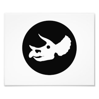 Triceratops Skull Photo Art
