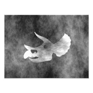 Triceratops Skull Photographic Print