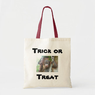 Trick or Treat Canvas Bag