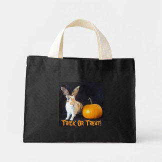 Trick or Treat Bag Halloween Bunny