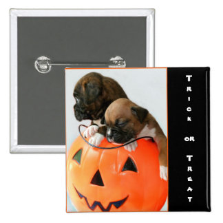 Trick or treat Halloween Boxer puppies button