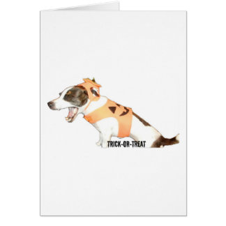 Trick or Treat Jack Russell Greeting Card