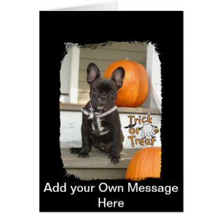Trick or Treat Pup Card