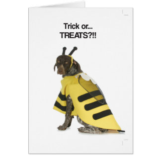 Trick or ... Treats? (GSP) Card