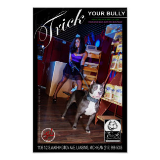 Trick Your Bully Poster