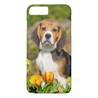Tricolor Beagle Puppy Cute Portrait, Phonecase iPhone 8 Plus/7 Plus Case