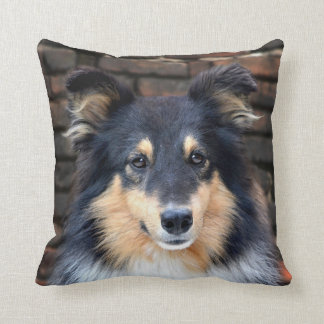 Tricolor Sheltie Cushion