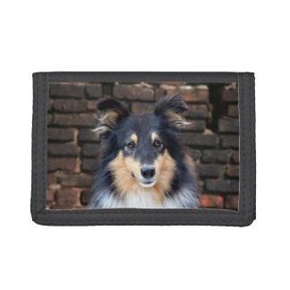 Tricolor Sheltie face Tri-fold Wallets