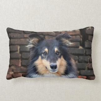 Tricolor Sheltie Lumbar Cushion