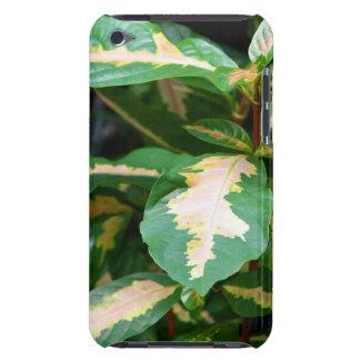Tricolored Caricature Plant Case-Mate iPod Touch Case-Mate iPod Touch Case