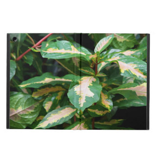 Tricolored Caricature Plant Powis iCase iPad Air iPad Air Covers