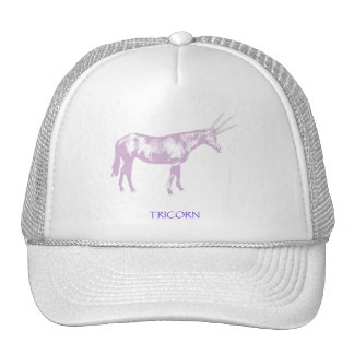 Tricorn Mesh Hats