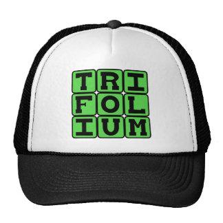 Trifolium, Three (Maybe Four) Leaf Clover Hat
