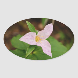 Trillium Flower Oval Sticker