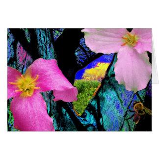 Trillium , greeting card