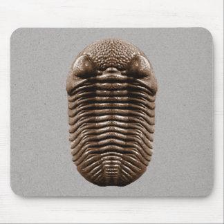 Trilobite Mousepad