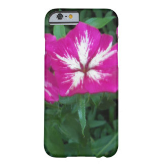 Trio of Hot Pink Phlox Barely There iPhone 6 Case