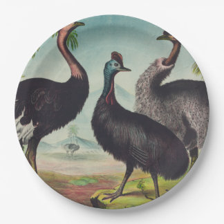 Trio of Ostriches Paper Plate