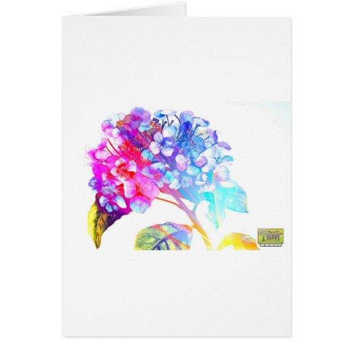 Tripix Design 0022 - A Peaceful Offering Cards