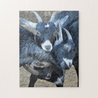 Triple Goats Wrestling Jigsaw Puzzle