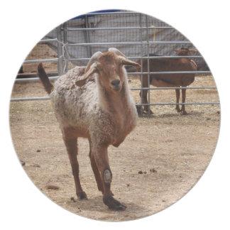 """Tripod"" Farm Goat Melamine Plate"