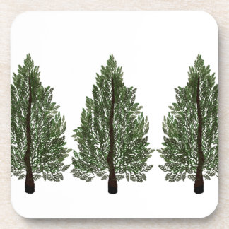 Tripple Pines Coaster
