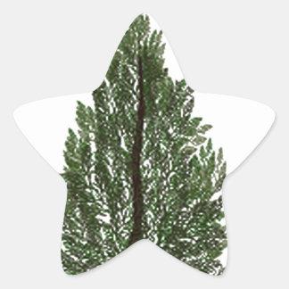 Tripple Pines Star Sticker